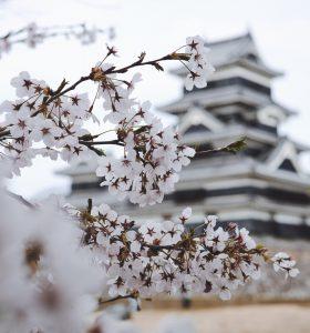 Partir vivre au Japon